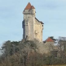 Burg_Liechtenstein1