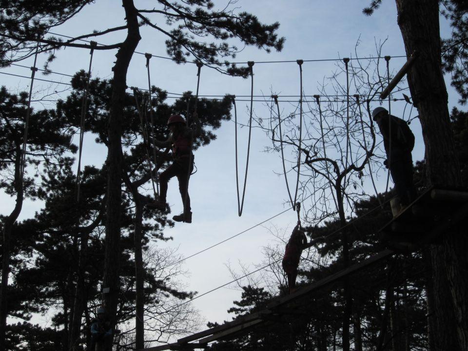Geschicklichkeit gefragt im Kletterpark am Leopoldsberg