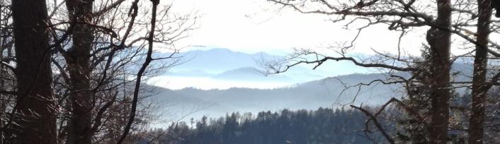 Schneeberg vom Enziansteig aus